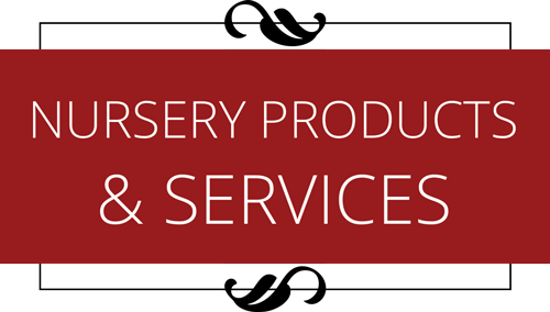 Learn more about our nursery and it's products & services.